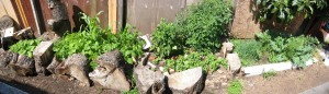 gardenpanorama